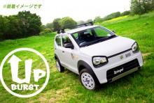 UP BURST α (アップバースト アルファ) 車高調整キット スズキ アルト/アルトワークス/アルトターボRS HA36S/HA36V ※2WD車専用 [UPBPNS76-01]